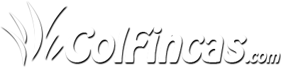 Colfincas.com